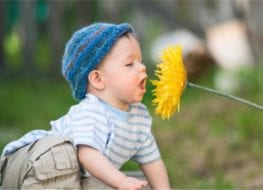 los sentidos de tu bebe MundoBebé - Cunas de Madera - Cómodas - Roperos - Accesorios, Ambientes de dormitorio. Avenida Dorsal 965, Recoleta - Santiago (Metro Dorsal)